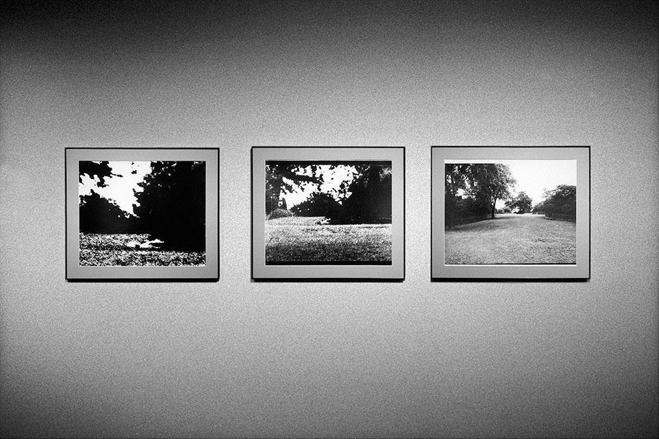 Michelangelo Antonioni, c/o Berlin, Blow up, analog, s/w, schwarz-weiss, b/w, black and white, Contax T3