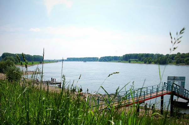 Konfirmation, Schiko, FotoSchiko, Rhein