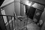 analog, Kellertreppe, Olympusmju2, analoge Fotografie, Fotos auf Film, tmax400, Kodaktmax400, sw, bw, Schwarzweiss,
