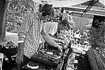 analogphotography, analogfotografie, filmfeed, 35mm, 35mmfilm, contax t3, kodakportapro400, point and shoot, Aki Aki, 4 Linden, Rasputin, Candomble, Suffon, Dj, elektronische musik, Düsseldorf, Düsseldorf musik