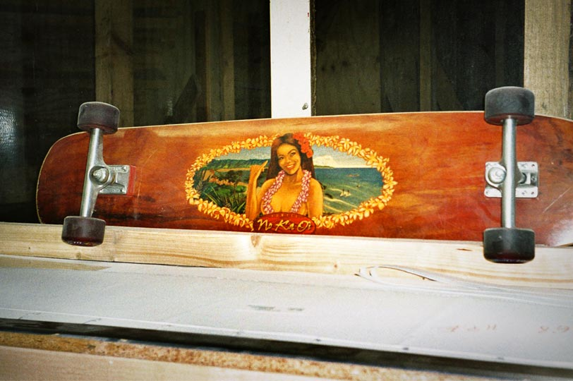 alex, surfen, surfboard, donald